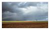 Il pleut ! (philturp) Tags: panoramic paysage landscape ciel panoramique pluie saintehermine paysdelaloire france fr champ