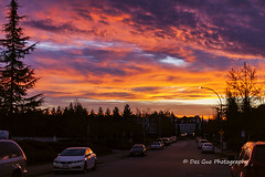 Colors of the Sky at Sunrise, Surrey BC (PhotoDG) Tags: sky color cloud street city sun sunrise surrey lowermainland fraservalley