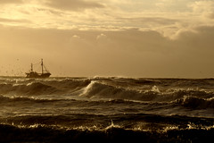seagulls sun and sea (Wöwwesch) Tags: sea ocean waves water sun spray coast beach boat fishing seagulls clouds sky
