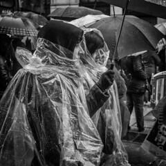 (foto-german) Tags: blackwhite blackandwhite rain bw