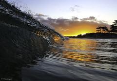 Fire Pit (Omnitrigger) Tags: surf wave ocean pacific swell sunrise sun reflection water decompresean nature omnitrigger beach california coastline tube barrel dawnpatrol waveporn glassy beachbreak shorebreak pitchinglip lipline