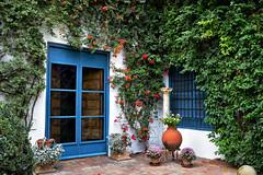 Viana Palace, Cordoba (Jocelyn777) Tags: courtyard patio patioandalus vianapalace flowers plants foliage doorsandwindows cordoba patiocordobes andalucia spain travel