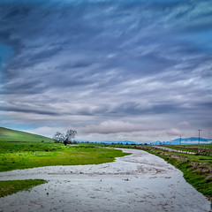 Yokohl Valley Rain Day (Calpastor) Tags: landscapetravel cattle agriculture country california tulare visalia exeter water rain clouds cloudscape hills green storm spring weather drought