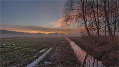 Ehemaliges Niedermoor (Robbi Metz) Tags: deutschland germany bayern bavaria reischenau landscape trees forest creek sunrise sky colors canoneos