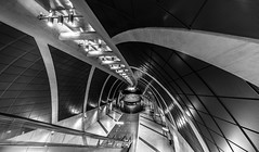 modern vault (Blende1.8) Tags: heumarkt köln koeln cologne underground metro station bahnhof ubahn subway lines line linien curvy curves mono monochrome monochrom architecture architektur modern contemporary wideangle carstenheyer sony alpha ilce7rm2 1224mm emount urban deutschland nrw gewölbe vault tube escalator rolltreppe sel1224g