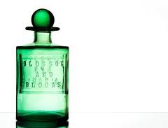 Bottle (Karen_Chappell) Tags: bottle green white glass stilllife product orb sphere round circle marble ball vase