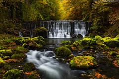 Gorges de L'Areuse @ Saint-Sulpice, Switzerland (Avisekh) Tags: areuse fall autumn foliage switzerland canon 2470ii polatizer tripod wwwavisekhphotographycom areusegorge lareuse saintsulpice swiss