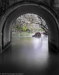 Through the bridge.