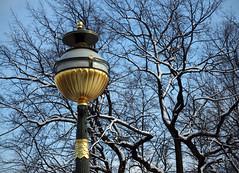 Gold Lamp Post (peterphotographic) Tags: olympus em5mk2 microfourthirds ©peterhall saintpetersburg stpetersburg russia санктпетербу́рг росси́я p3200239edwm lamppost street gold golden tree imperial tsar