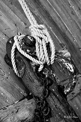 DSC_0187_All_In_a_Knot (rjh0361) Tags: monochrome bw blackandwhite dorset sea ships anchor knot rope rusting rust