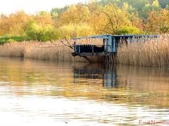 Carrelet sur la Garonne (Ezzo33) Tags: france gironde nouvelleaquitaine bordeaux ezzo33 nammour ezzat sony rx10m3 paysage fleuve rivière garonne carrelet pêche automne orange