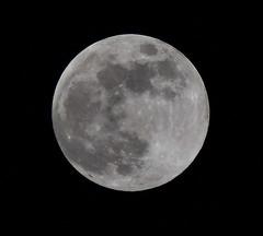 Lunar Illusion (Robin Shepperson) Tags: moon cycle craters illusion conspiracy silver grey night nikon d3400 berlin germany tamron deutschland sky bw blackandwhite monochrome imhardeep1