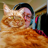 Oliver (dalecruse) Tags: oliver cat cats feline felines orange pet sanfrancisco california unitedstates us dalecruse dale cruse self selfie