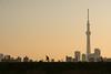 晴空塔|SKYTREE (里卡豆) Tags: katsushikaku tōkyōto 日本 jp tokyo olympus penf 45mm f12 pro olympus45mmf12pro 東京 tokyocity 晴空塔 skytree