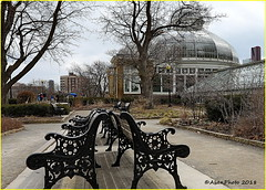180407 Toronto Allan Gardens (93) (Aben on the Move) Tags: allangardens garden flowers plants nature beauty toronto ontario canada