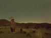 Spanish Padre and Dog Metal Sculpture - Galleta Meadows (Jun C Photography) Tags: night olympus microfourthirds omd anzaborrego astrophotography sandiego metalsculpture u43 borregosprings em5 mft ricardobreceda galletameadows padre starrylandscapestacker stacked markii mkii mk2 longexposure