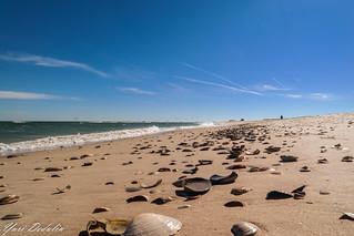 Sunday @ Island Beach