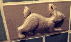 March 9: Rabbit Tile (earthdog) Tags: 2018 googlepixel pixel androidapp moblog cameraphone animal tile bathroom art publicart rabbit disney disneygrandcalifornian hotel project365 3652018 needstags needstitle disneyland anaheim california