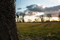 DSC_0223 (stefanzalucki) Tags: landscape sky hdr nikon d70