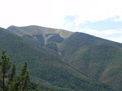 DSCN9727 (Gianluigi Roda / Photographer) Tags: apennines summer latesummer mountains woods trees rocks landscapes crocedeicolli appenninobolognese