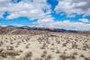 Old Dale Road, Joshua Tree National Park, California (paccode) Tags: solemn california d850 sand landscape desert bushes brush serious quiet hills mountain unitedstates us
