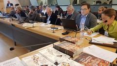5th European Soil Partnership (ESP) meeting (FAO of the UN) Tags: europe soil partnership devco gsp dgenv european commission global gsop18 pollution fao food agriculture organization 5theuropenasoilpartnershipmeeting regional