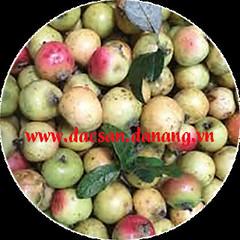 Rượu táo mèo - Món ngon nổi tiếng núi rừng Tây Bắc (dacsandanang.dlp) Tags: public view