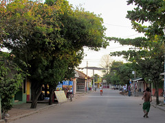 DMP4 140