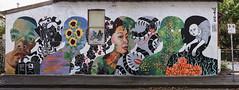 What's on my mind? (J-C-M) Tags: jasonparker veins street wall art streetart wallart graffiti grafitti paint painting collingwood melbourne victoria australia