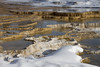 Mammoth Hot Springs Terraces (YellowstoneNPS) Tags: hotspring mammothhotsprings thermalfeaturesinyp yellowstonenationalpark