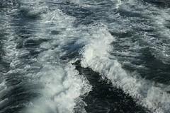 Ferry Wake (HaskelR) Tags: water ferry pattern wake texture trail crash crashing