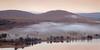 Mist Tide - Loch Tulla (Russell-Davies) Tags: canon 6dmkii uk scotland highlands loch lochtulla argyll bridgeoforchy scotspines forest reflection mist