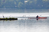 Neubrandenburg - Kanute auf dem Tollensesee (www.nbfotos.de) Tags: neubrandenburg tollensesee see lake kanu kanute reiher mecklenburgvorpommern