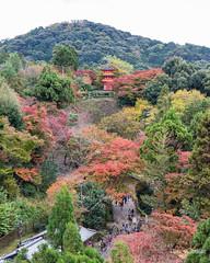 Koyasu Pagoda (DanaMichelle309) Tags: fallfoliage japan kiyomizu kiyomizudera kyoto shrine travel kyōtoshi kyōtofu jp