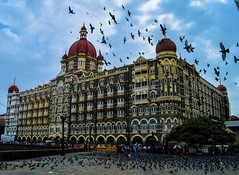 The Majestic Taj.... (pherarimon) Tags: mumbai taj bombay travelstories