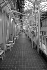 untitled (Hideki Iba) Tags: floor wooden nikon d850 2470 kobe japan vanishingpoint building architecture wood bw blackandwhite 白黒 日本 神戸 三宮