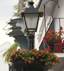 Spanish Flowers! ('cosmicgirl1960' NEW CANON CAMERA) Tags: marbella spain flowers red yellow lamp green espana andalusia costadelsol yabbadabbadoo travel holidays