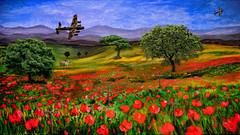 flyby reflection (sw2018) Tags: art plane poppy poppies field lancaster tree sky war