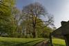 Haus Bodelschwingh Park (snej1972) Tags: privat fotos photographie fotografie dortmund tremonia nrw germany deutschland alt ancient stadt adel wasserschloss wasser wassergraben