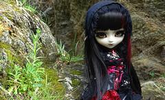 Awell (Lunaria Nfield) Tags: pullip wihelmina awell chaos néant nfield doll pullips custo custom wig leeke lunaria askadalya