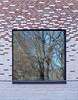 School window with mirroring (Barbro_Uppsala) Tags: uppsala sweden tiundaskolan window mirroring fotosondag fotosöndag punctum fs180318 trees