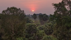 Sunset in the Jungle (qonebe) Tags: canon 6d travel asia voyage asie cambodge cambodia angkor jungle temple