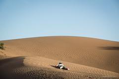Bouygayouarne © Sophie Bigo - SBGD 2018-17 (SBGD_SophieBigo) Tags: photography artdirector freelance sophiebigo morocco maroc trip traveler travelphotography trek