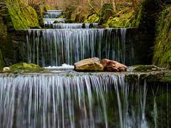 Küsnachter Tobel (torremundo) Tags: landschaften bergbach felsen schlucht steine wasserfall flüsse täler küsnacht zürich schweiz