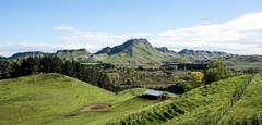 Te Mata Peak (Kiwi-Steve) Tags: nz newzealand tematapeak hawkesbay mountain landscape nikond7200 nikon