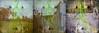 Triple marcheur (andrefromont) Tags: andréfromont andrefromontfernandomort fernandomort triptyque triptych marcheur piéton walker