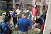 IMG_7210 (Tricia's Travels) Tags: volunteering volunteer habitatforhumanity habitatforhumanityvietnam vietnam travel globalvillage