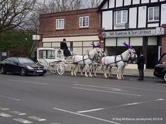 4-41173987342_db70dfbf3a_o (whiskymac) Tags: horsedrawn hearse drawn horsedrawnhearse