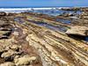 IMG_20180409_121014hdr (joeginder) Tags: jrglongbeach oceantrails whitepoint hiking pacific california ocean beach rocky geology palosverdes sanpedro