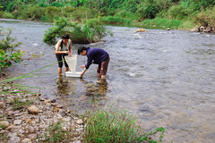 Sampling macroinvertebrate
